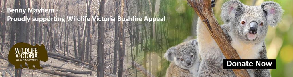 Benny Mayhem's Save The Koalas Tour
